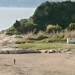 漁港食堂 だいぼ - 帰り道、昔のビーチ・ボーイズのダイヤモンドヘッドの跡地散策(^ー^)