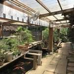 櫻屋 - この盆栽の棚の向こうがテラスです
