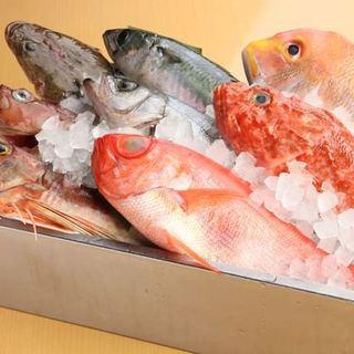 築地より毎日入荷!鮮度にこだわる季節の鮮魚!