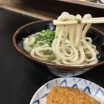 松下製麺所 - 松下製麺所(香川県高松市中野町)うどん1玉
