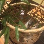 名栗温泉 大松閣 - 鮎の塩焼き、篭入り