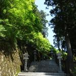 秋葉茶屋 - 秋葉杉茂る参道(秋葉坂)と秋葉灯籠