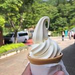 道の駅 どうし - 料理写真:豆乳ソフト320円。