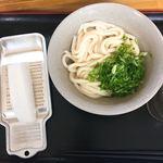讃岐うどん屋 - 料理写真:しょうゆうどん(冷)の小です。(2018.5 byジプシーくん)