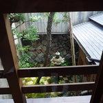 8664821 - 窓からお庭