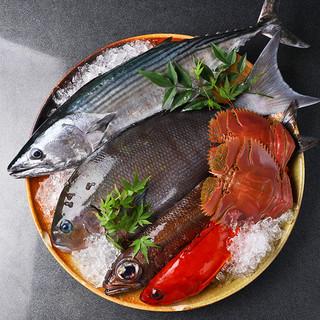 【新鮮魚介】漁師町・宮津直送の新鮮な味を堪能