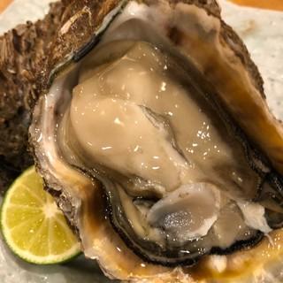 夏の味覚岩牡蠣と栄螺入荷してます