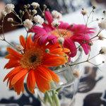 サンサール - 青い象さんの可愛らしいテーブルクロスに華やかな切り花がお客様をお出迎えです