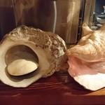 貝と魚シェルハラ - 飾り