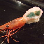 大将寿司 - 甘海老。