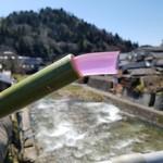 かゑで本舗 加東家 - 料理写真:青竹の香りの風情がたまらない「つぼんこ (200円)」