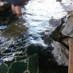 86944039 - 足湯もあります。  脚の疲れが抜けてきます。 時々硫黄臭が花をかすめます。