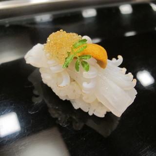 もり田 - 料理写真:アオリ烏賊