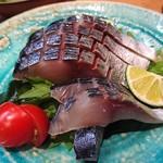 彩櫻 - しめ鯖