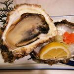 富山 天然5年物 特大岩牡蠣