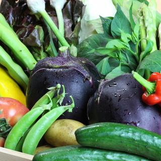 旬野菜でなく、瞬野菜を。京都全域で育まれた朝採れ野菜を愉しむ