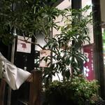 恵比寿 箸庵 - 夜のテラスを満喫〜♬