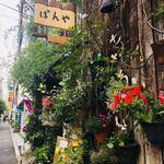 カフェむぎわらい - お店の外観には花が咲き乱れていて、おしゃれ。
