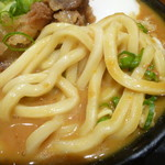 Nihombashisanukiudonhoshino - モチモチ麺