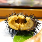 小判寿司 - 殻付雲丹