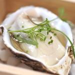 87306503 - 三陸 松島の牡蠣