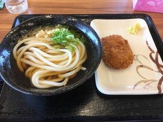 こだわり麺や フレスポ高松店 - かけうどん210円 コロッケ100円