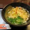うどん 隠れ家 - 料理写真:天ぷらうどん