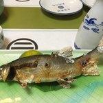 季節料理 たにぐち - 料理写真: