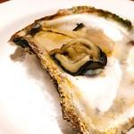 87374758 - 徳島産岩牡蠣