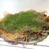Okonomiyaki Hassho - 料理写真:そば肉玉