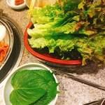 87400446 - チシャ菜、ゴマの葉です。(2018.5 byジプシーくん)
