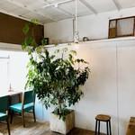 寺崎コーヒー - 植物の配置も絶妙