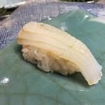第三春美鮨 - 障泥烏賊 2.6kg 雄 定置網漁 空輸 鹿児島県出水
