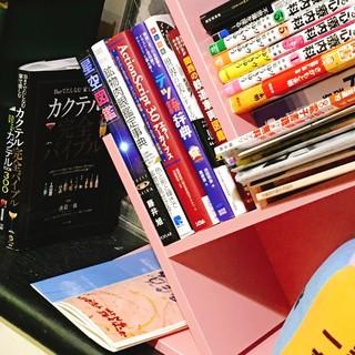 図鑑や時刻表の本、懐かしいおもちゃ等