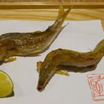 こりょうり たか屋 - 料理写真:(撮影 20180613)琵琶湖の若鮎…初物です。