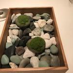 87661531 - 小石と苔