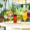 マグネットカフェ竹園 - ドリンク写真:リゾートドリンク