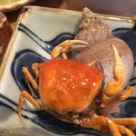 87707180 - サワガニの素揚げ・バイ貝