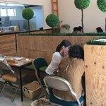カフェ ジョリオン - [2018年6月]スッキリした店内
