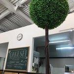 カフェ ジョリオン - [2018年6月]倉庫な感じの天井