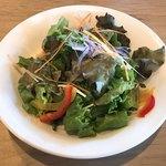 カフェ&レストラン BERG - サラダ