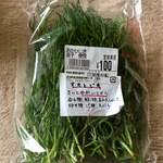 花野果市場 - カリウムが豊富な「おかひじき」は、塩分の吸収を妨げてくれますp(*^-^*)q