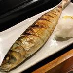 魚道 - 真鰺