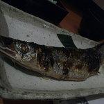 酒菜亭 ひぐち - THE  秋刀魚定食