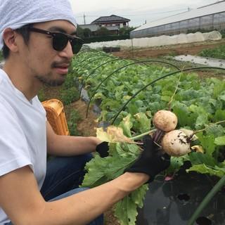 有機農法にこだわりシェフ自ら旬のお野菜を作っています!