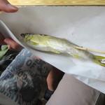 浄蓮の滝 天城国際常設鱒釣場 バーベキュー施設 - 料理写真:焼きたてのあゆ