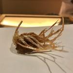 天麩羅 吉祥 - 天使の海老の足