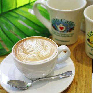 アースカフェの認定オーガニックとは、100%無農薬栽培のこと