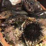 四十八漁場 - 今日のおススメの魚