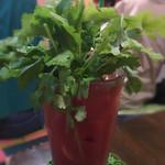 亜鹿猪~珍 - トマトジュースパクチーいり